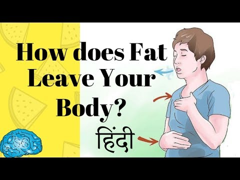(Hindi) How does Fat leave the body? (Myth Busted)