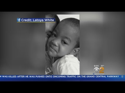 5-Year-Old Attacked By Pit Bull