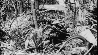 Action At Angaur, Palau 1945 World War II Pacific Film