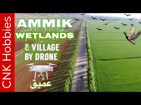 Ammiq wetlands @ Skaff estate [4K] | عمّيق, البقاع