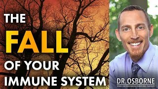 The Fall Of Your Immune System