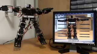 Processing and Arduino Controlling 17 DOF Robot