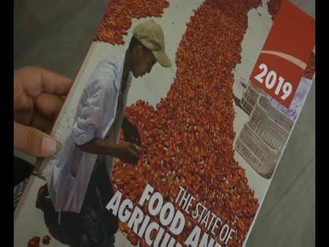 يوم الأغذية العالمي.. ناقوس تنبيه للتخلص من الجوع  - 10:55-2019 / 10 / 16