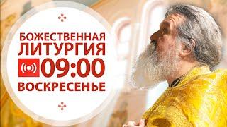 Трансляция: Литургия. 10 января  2021 (воскресенье)  09:00