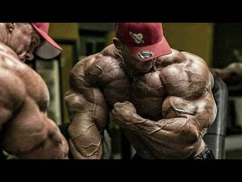 Bodybuilding Motivation - No Limits