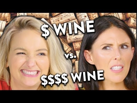 Cheap vs. Expensive Wine Taste Test!