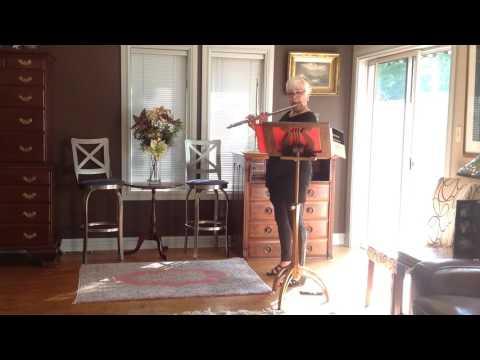 Platinum Brannen Flute No. 1002 | Joan Sparks | Flute Pro Shop