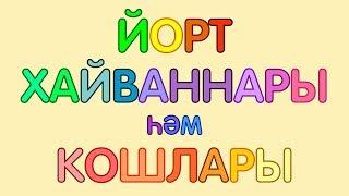 ДОМАШНИЕ ЖИВОТНЫЕ и ПТИЦЫ на татарском языке/ ЙОРТ ХАЙВАННАРЫ һәм КОШЛАРЫ/ DOMESTIC ANIMALS & BIRDS