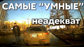 """Подборка САМЫХ """"УМНЫХ"""" водителей #366"""