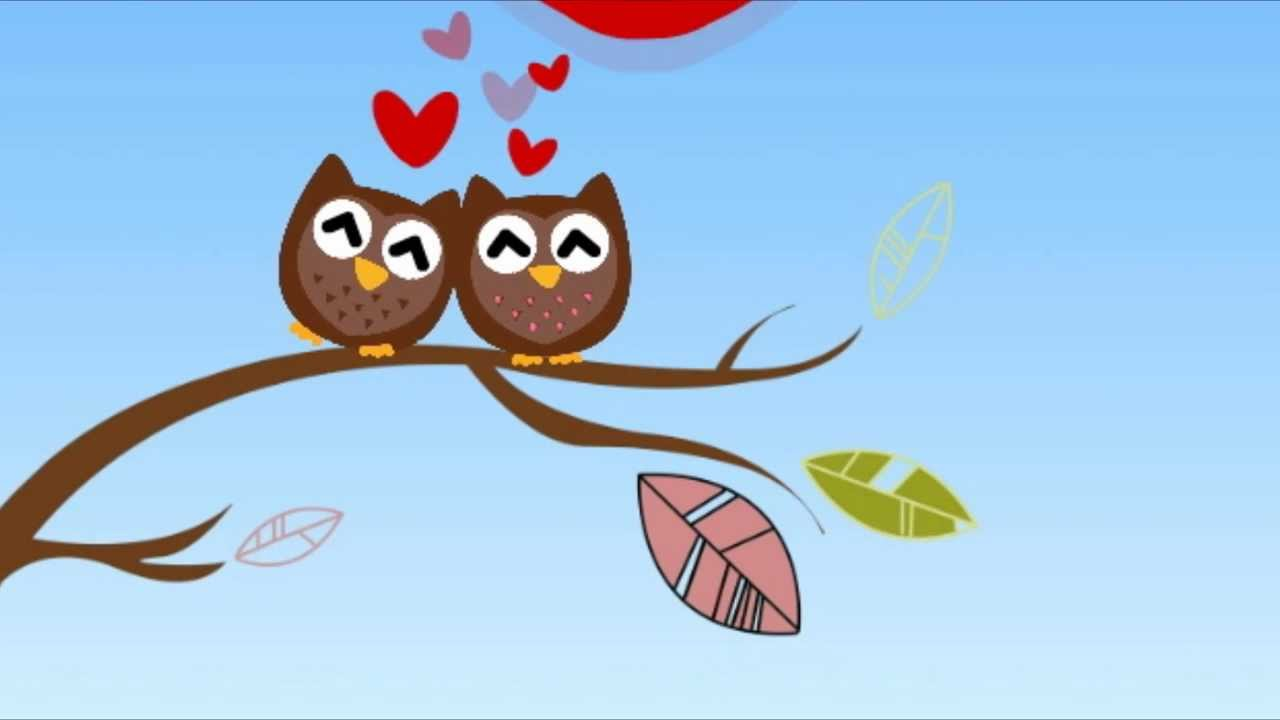Owl In Love Happy Valentine S Day Youtube