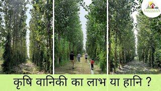 कृषि वानिकी/Agroforestry का फ़ायदा या नुक़सान? - एक पर्माकल्चर फार्म के नज़रिए से