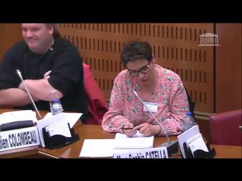 19.03.19 Olivier Gaillard réponse du SNUipp-FSU fomation inclusion des élèves handicapés