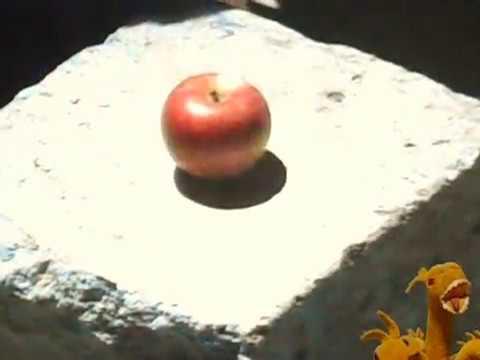 リンゴがひとつ