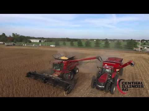 Late September Harvest in Central Illinois