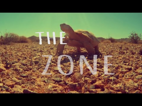 Enigma Experience - The Zone - Official Lyric Video
