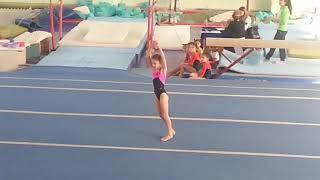 Чемпионат  по спортивной гимнастике среди девочек