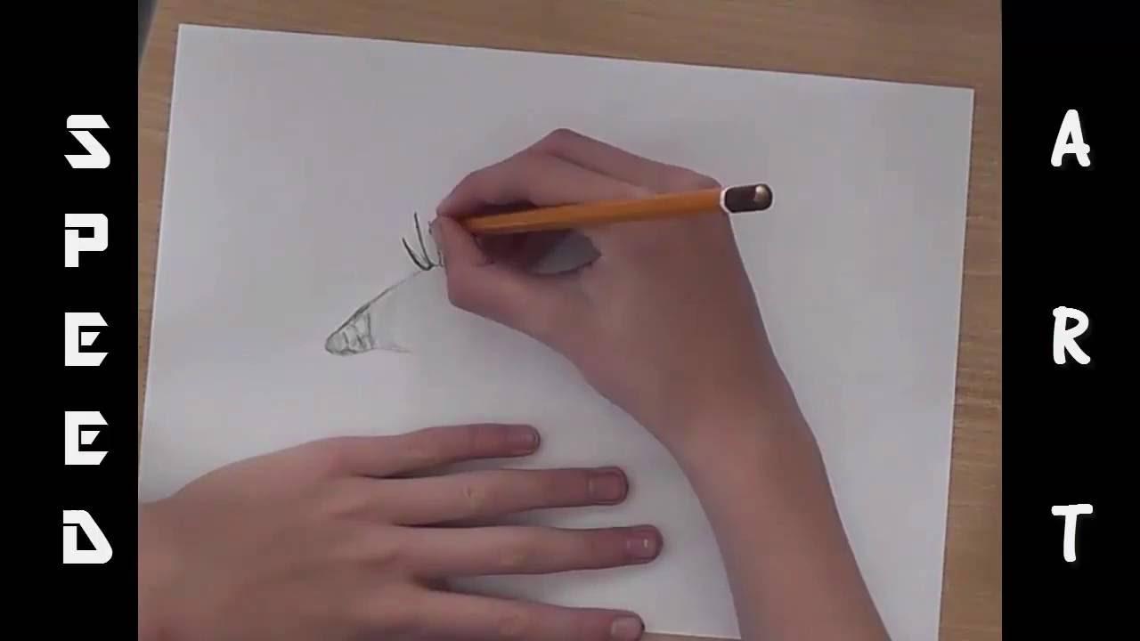 8 Kreslenie Iba Z Ceruzkou Oko Oko4ever Youtube