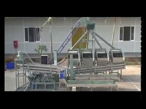 Cashew Shelling Machine, Automatic Cashew Nuts Processing Line