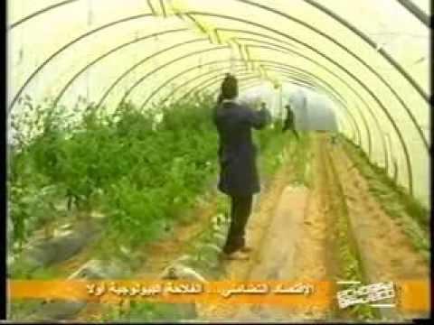 le panier bio maroc eco echo et global post