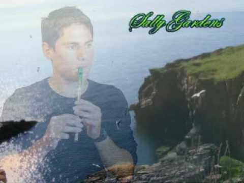 Irish Tin Whistle - Sally Gardens