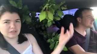 видео Питомник «Новосибирский питомник растений»