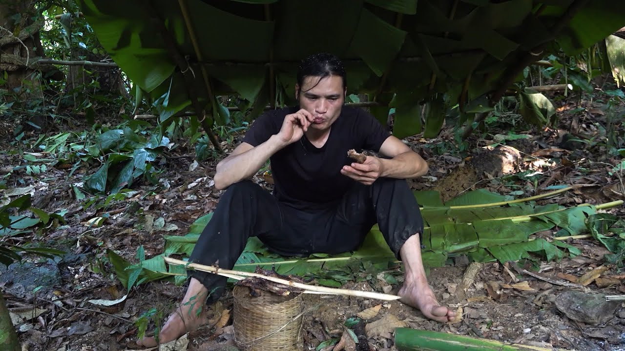 【Man and Machete】Six months of survival in the tropical rainforest, episode 11
