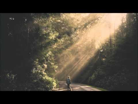 Alan Walker - Faded (Sara Farell Cover) Low5 Bootleg