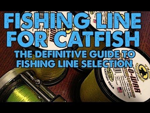 Catfish Fishing Line: Braid Vs' Mono, Size And Hi Vis Advantage