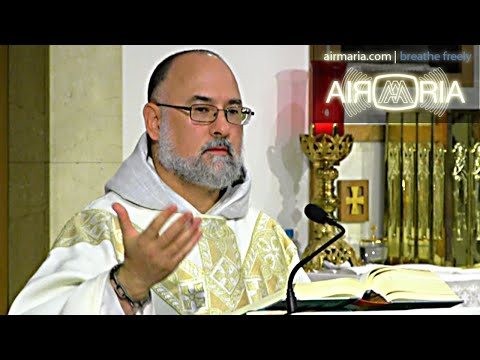 With the Immaculata, What Else Do You Need? - Aug 19 - Homily - Fr Alan