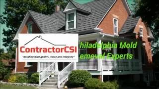 Philadelphia Mold Removal, Inspection, Testing and Estimate [215-274-0085]
