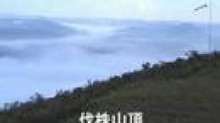 KUSU KUSU - 雲の海