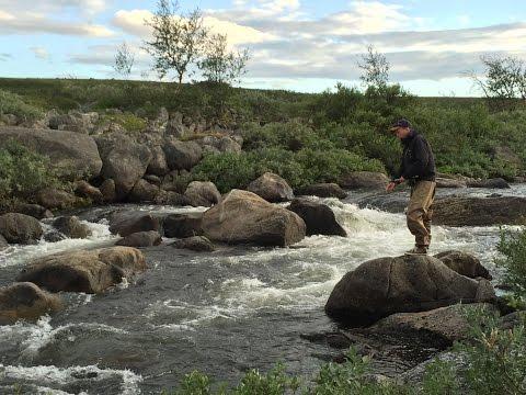 Finnmark 2016 - Tørrflue, laks og midnattsol