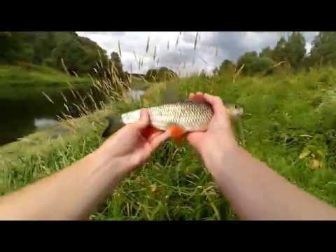 блесны для ловли голавля и язя