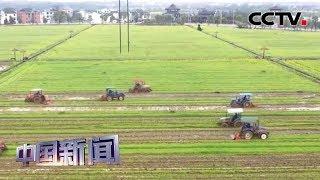 [中国新闻] 商务部:中国粮食库存充裕 储备充足 | CCTV中文国际