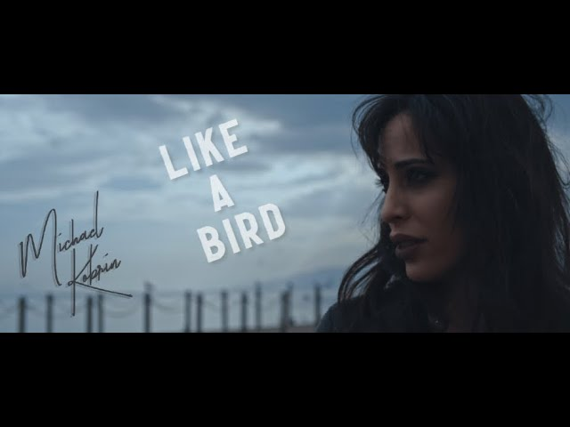 Michael Kobrin - Like A Bird (Official Video)
