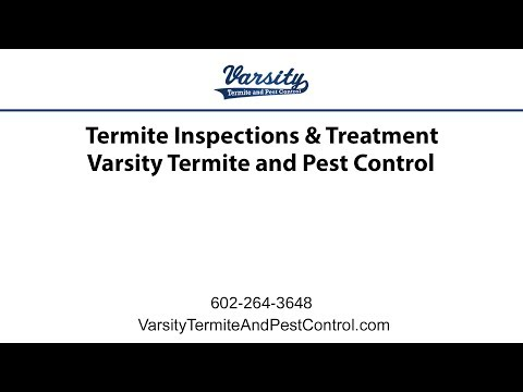 Termite Inspections & Treatment | Varsity Termite & Pest Control