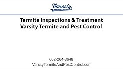 Termite Inspections & Treatment | Varsity Termite & Pest Control