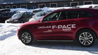Gambar cover АРТЕКС. ролик #1. Jaguar F-PACE