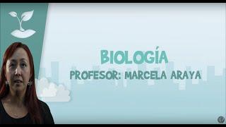 Biología - Clase Nº1 - Conceptos básico de Biología