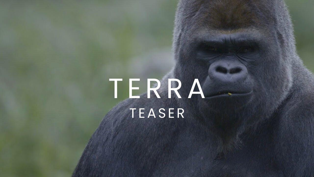 TERRA (Teaser HD VF 2015)