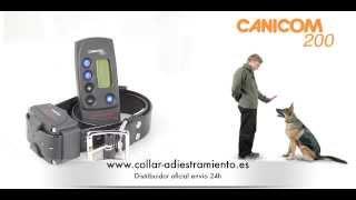 Canicom 200 Collar Adiestramiento Para Perros