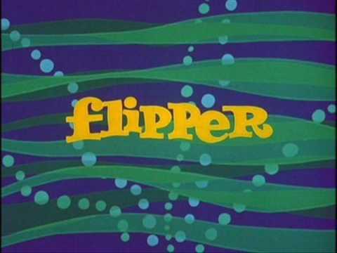 FLIPPER THEME