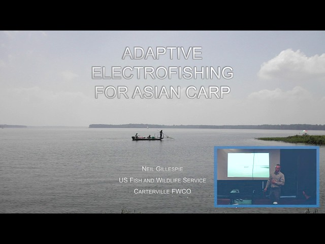 Adaptive Electrofishing for Silver and Bighead carp Sampling