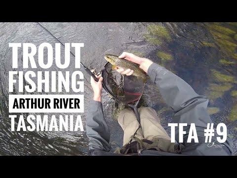 TFA #9 | Trout Fishing, Arthur River | Tasmania