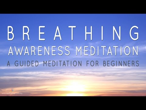 Breath Awareness | Guided Meditation for Beginners | Reduce Stress| Calm Mind