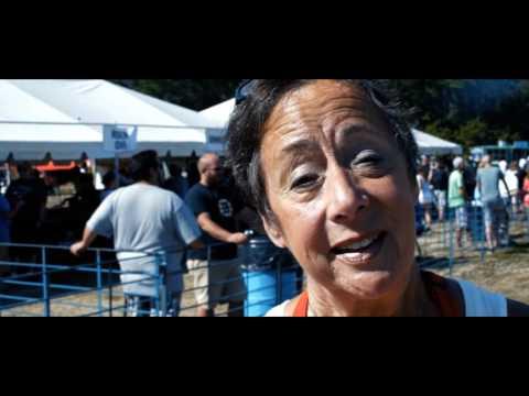 2016 Festival Compilation Video