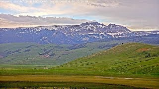Elk Refuge Live Webcam @ Flat Creek Inn