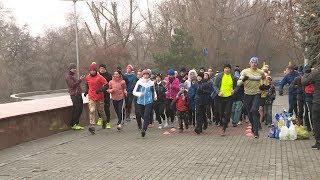 В Волгограде состоялся благотворительный забег «Помоги четырем лапам»