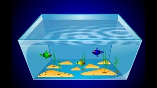 How to draw an aquarium in Corel Draw