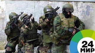Опубликовано видео задержания группы, отправлявшей боевиков в Сирию - МИР 24